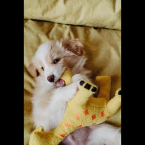 Kép 4/4 - Hunter Eiby Zsiráf Plüssállat kutyáknak - 18 cm
