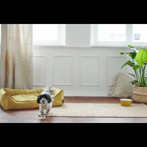 Kép 6/6 - Hunter Eiby kutyakanapé sárga - S