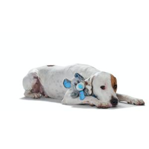 Kép 2/2 - Hunter Quincy Egér Plüssállat kutyáknak - Egér