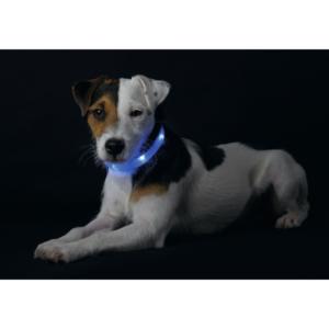 Kép 2/2 - Hunter Yukon világító nyakörv - kék (20 - 70cm)