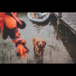 Kép 2/3 - Hunter Vízen Úszó Palu Polip kutyajáték - 27 cm