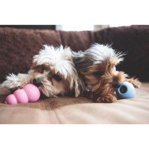 Kép 3/4 - KONG Puppy Kutyajáték rózsaszín - M : 9cm