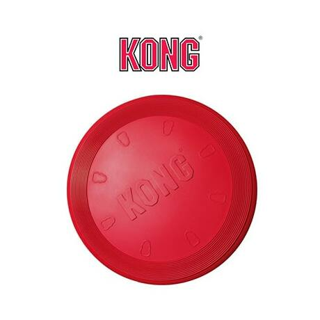 kong-flyer-frizbi-min